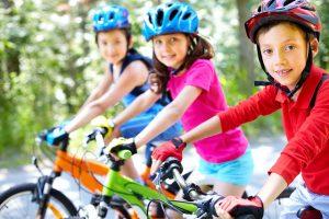 Lipno na kole je bezva - vychutnáte si lehké cyklotrasy i náročné traily.