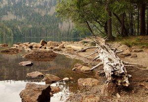 Plechý s Plešným jezerem