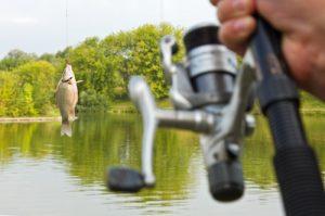 Rybaření na Lipně je takové, jaké nikde jinde.