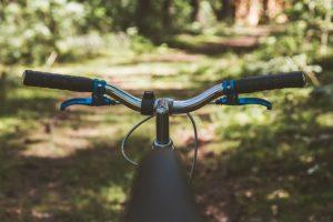 Chcete se jenom tak toulat, nebo si projet cyklotrasu kolem Horní Plané? Poradíme vám nelepší trasy.