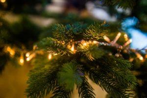 Vánoce, Vánoce přicházejí... do Horní Plané. Z Hůrky, z našich penzionů a apartmánů u Lipna to máte kousíček.