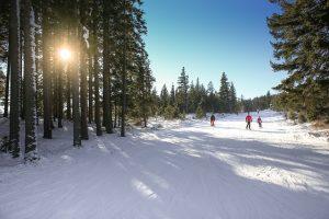 Užijte si lyžování na pohodu v malém skiareálu, který leží kousek od Horní Plané.