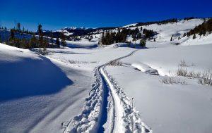 Apartmány leží na kraji Hůrky a na běžecké stopy dorazíte přímo z ubytování. A lyžování v Hochfichtu je od nás půl hodiny autem.