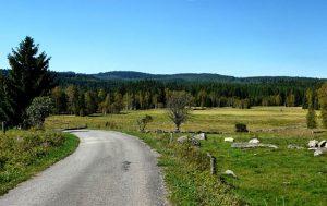 Ať se k nám do penzionu na farmě vydáte v létě, nebo v zimě, vyřádíte se.