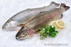 Ulovte si rybu v Pstruhařství Hůrka a my vám ji připravíme na váš způsob v naší Rybí restauraci