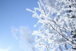 Zimní aktivity na Lipně, které jsou dostupné z našeho ubytování