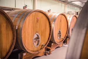 Vinařství Vinofol