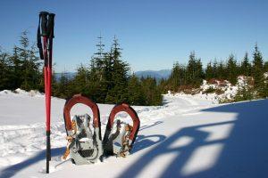 Sněžnice jsou skvělou alternativou, jak si zpestřit zimní dovolenou na Lipně.