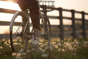 Když se do toho slunce opře, parádně si zajezdíte i na kole.